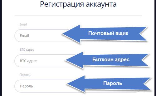 refbit форма зарегистрироваться